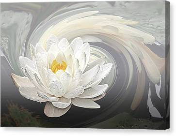 Water Lily Whirlpool Canvas Print