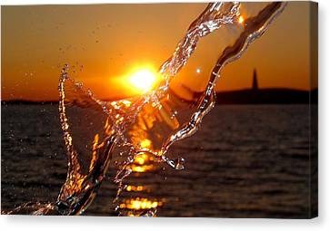 Water Mark Canvas Print by Donnie Freeman
