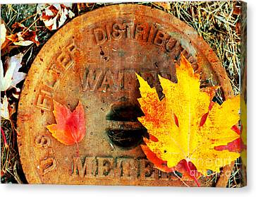 Water Meter Cover With Autumn Leaves Abstract Canvas Print by Andee Design