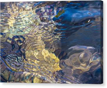 Water Monster Canvas Print by Omaste Witkowski