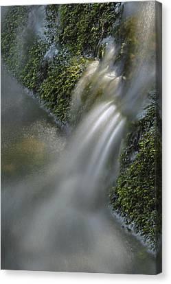 Smokey Mountains Canvas Print - Water Movement 12 by Stephen  Vecchiotti