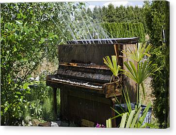 Water On My Piano Canvas Print by Irene  Theriau