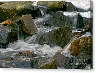 Water Over Rocks Canvas Print by Sharon Talson