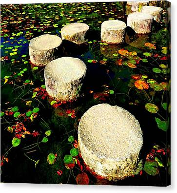 Water Path Canvas Print by Julia Ivanovna Willhite