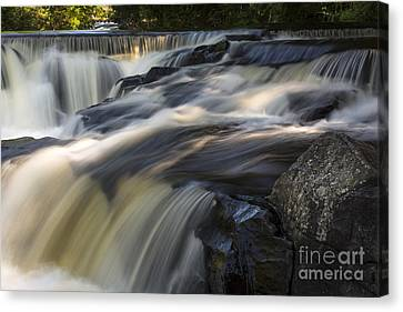 Water Paths Canvas Print by Dan Hefle