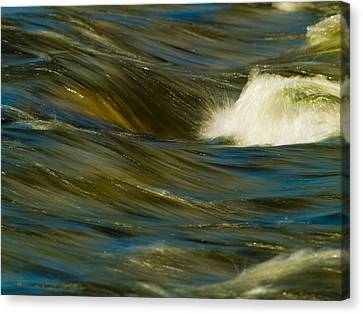 Water Play Canvas Print by Bill Gallagher