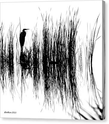 Water Reeds Canvas Print by Dick Botkin