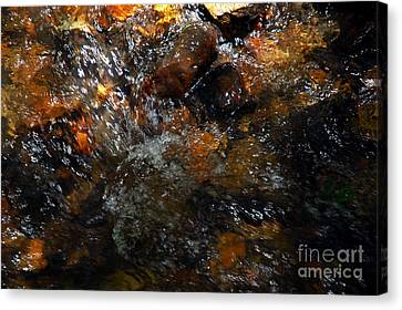 Water Rocks Canvas Print