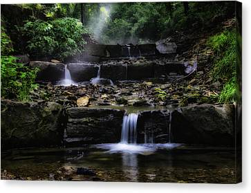 Water Steps In Fairmount Park Canvas Print by Bill Cannon