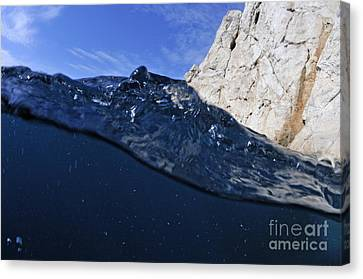 Water Surface Canvas Print by Sami Sarkis