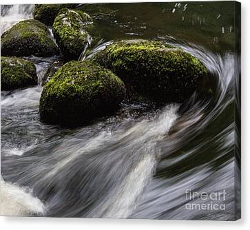 Water Swirl Canvas Print