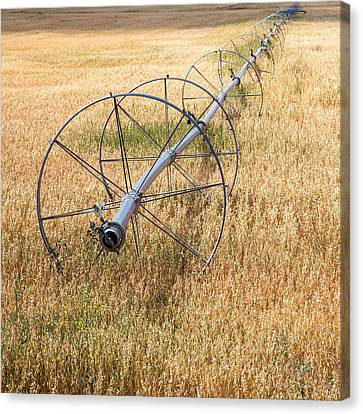 Water Wheel Canvas Print by Peter Tellone