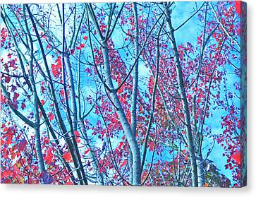 Canvas Print featuring the photograph Watercolor Autumn Trees by Tikvah's Hope