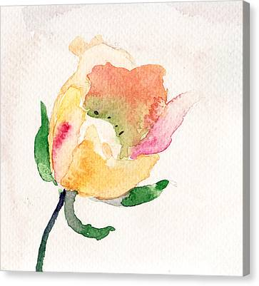 Watercolor Illustration With Beautiful Flower  Canvas Print