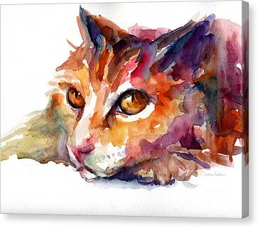 Watercolor Pet Portraits Canvas Print - Watercolor Orange Tubby Cat by Svetlana Novikova