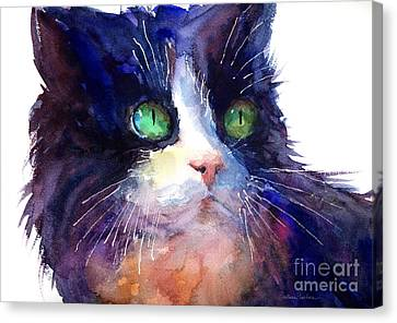 Watercolor Tuxedo Tubby Cat Canvas Print by Svetlana Novikova
