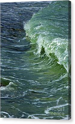 Watercolor Wave Canvas Print by Amazing Jules