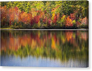 Reflection Harvest Canvas Print - Watercolors by Kyle Wasielewski