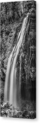 Canvas Print featuring the photograph Waterfall 3 Bw by Chris McKenna
