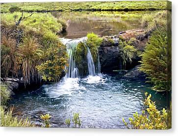 Waterfall And Pool Canvas Print by K Jayaram