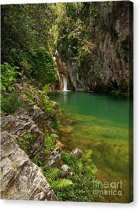 Waterfall And Pool Paradise - Cuba Canvas Print by OUAP Photography