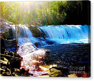 Waterfall At Dupont Forest Park Nc 2 Canvas Print by Annie Zeno