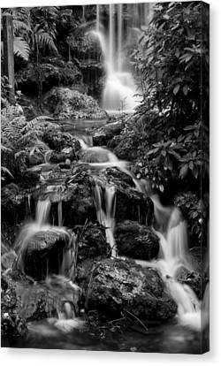 Waterfall At Rainbow Springs Canvas Print by Beverly Stapleton