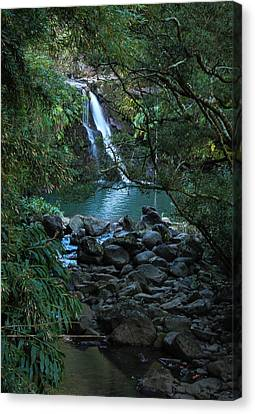 Canvas Print featuring the photograph Waterfall  by Cathy Donohoue