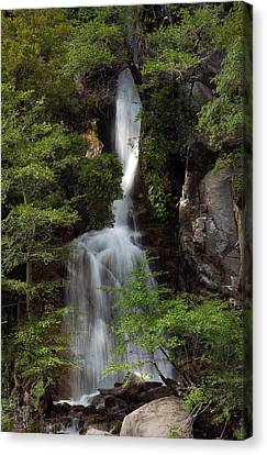 Waterfall Canvas Print by Gary Rose