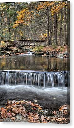 Autumn Leaf On Water Canvas Print - Waterfall - George Childs State Park by Paul Ward