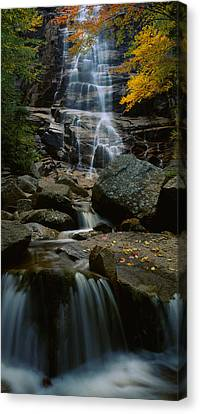 Autumn Scenes Canvas Print - Waterfall In A Forest, Arethusa Falls by Panoramic Images