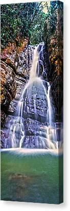 Waterfall In A Forest, La Mina Falls Canvas Print