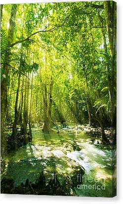 Waterfall In Rainforest Canvas Print by Atiketta Sangasaeng