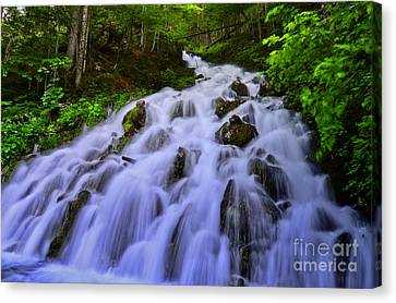 Waterfall In The Alps Austria Canvas Print by Sabine Jacobs
