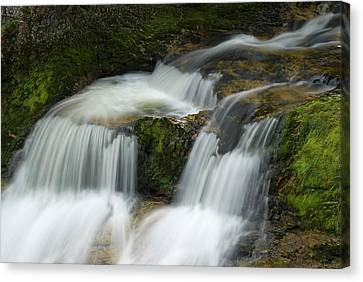 Waterfall In The Clammy Canvas Print