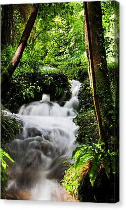 Waterfall Canvas Print by Kris Dutson