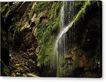 Waterfall Canvas Print by Mariusz Zawadzki