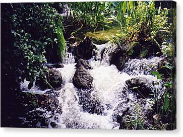 Canvas Print featuring the photograph Waterfall by Michele Kaiser
