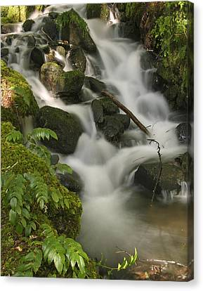 Canvas Print featuring the photograph Waterfall Mt Rainier National Park by Bob Noble Photography