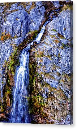 Waterfall-mt Timpanogos Canvas Print by David Millenheft
