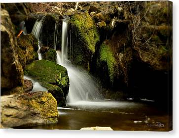 Waterfall - Naramata Dsc0043 Canvas Print by Guy Hoffman