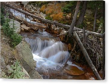 Waterfall Near Breckenridge Canvas Print by David Yack