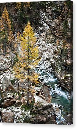 High Park Fire Canvas Print - Waterfall Of Creek Plimabach In Valley by Martin Zwick