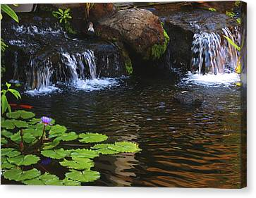 Waterfall On Kanapali Canvas Print