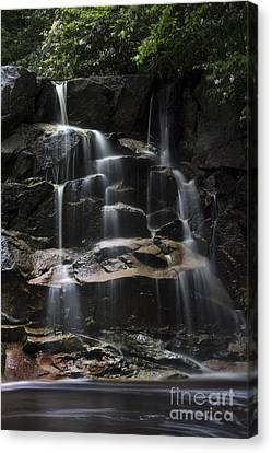 Waterfall On Small Stream Canvas Print by Dan Friend