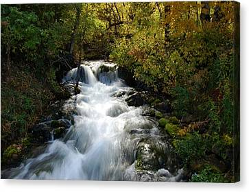 Waterfall On The Little Spearfish Iv Canvas Print