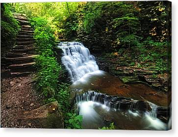 Waterfall Paradise With Stone Stairway Canvas Print by Aaron Smith
