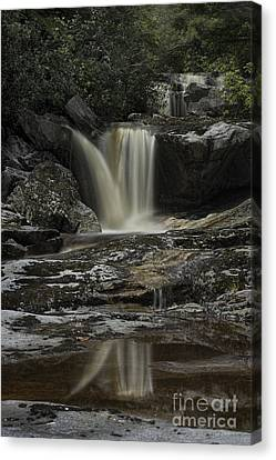 Waterfall Reflection On Big Run River  Canvas Print by Dan Friend