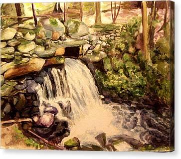 Waterfall Sharon Audubon 12x16 Canvas Print by Nicolas Bouteneff