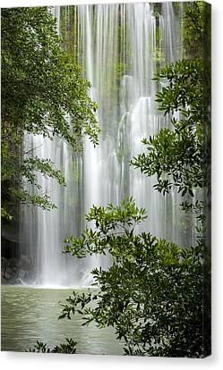 5dmk3 Canvas Print - Waterfall Through Trees by Juan Carlos Vindas